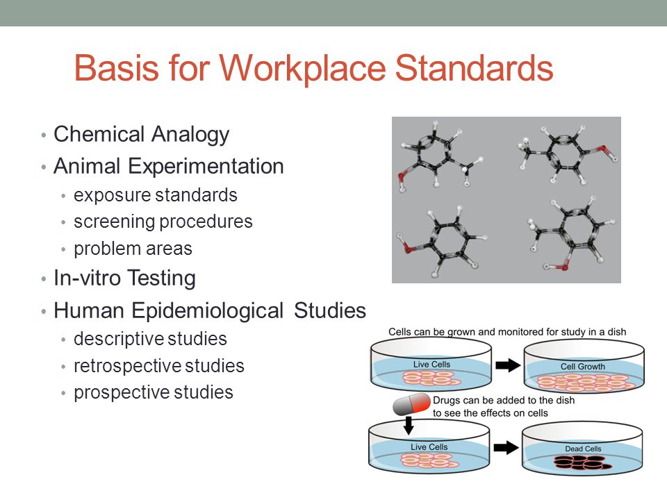 Basis for Workplace Standards