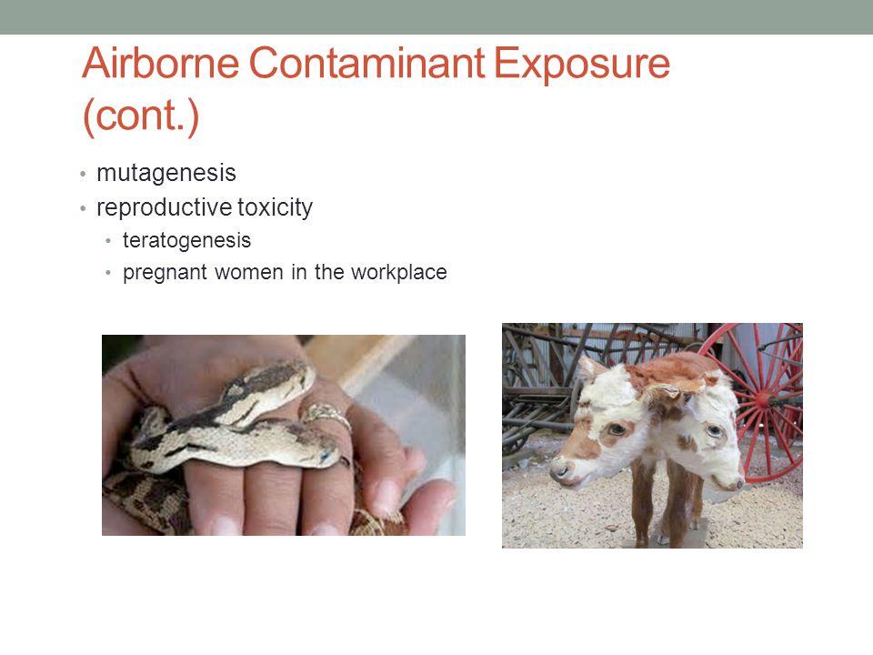 Airborne Contaminant Exposure (cont.)