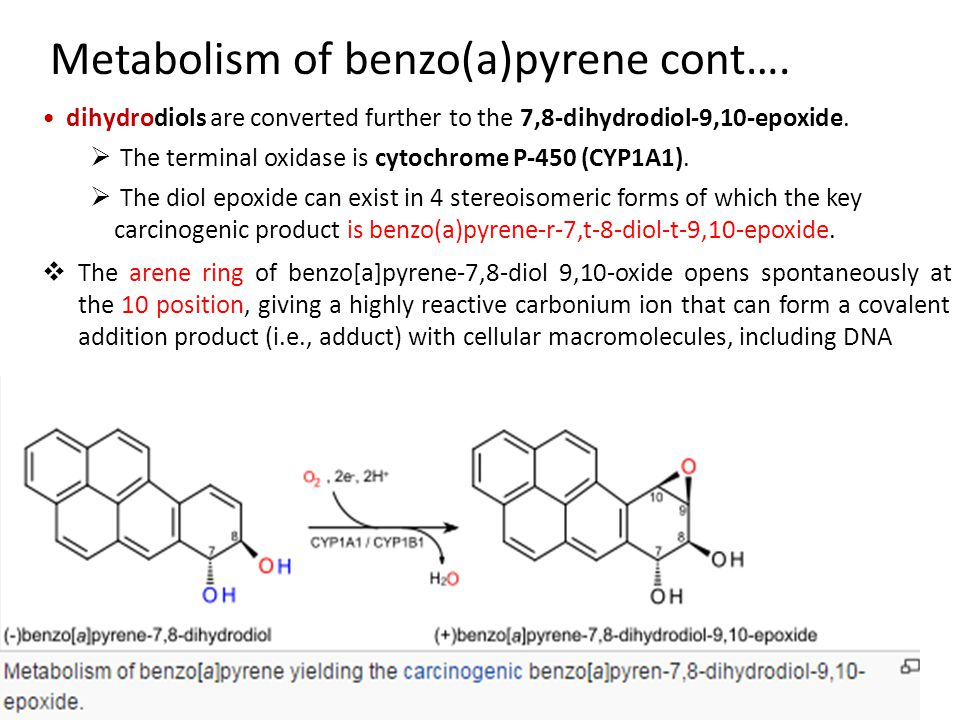 Metabolism of benzo(a)pyrene cont….