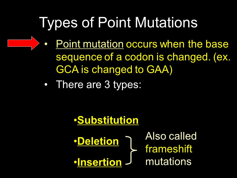 Types of Point Mutations