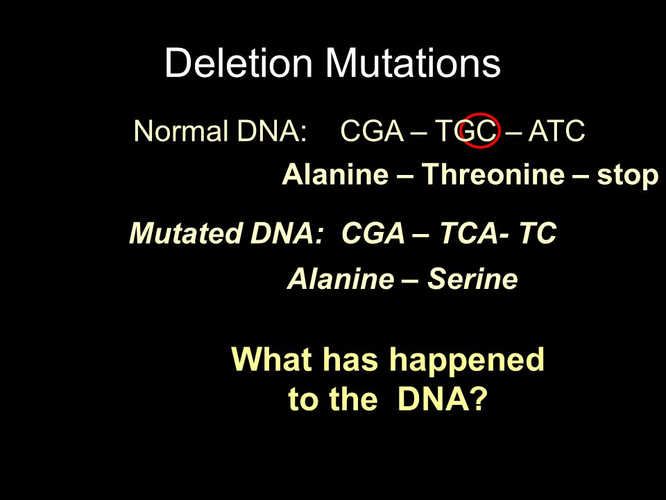 Deletion Mutations Normal DNA: CGA – TGC – ATC. Alanine – Threonine – stop. Mutated DNA: CGA – TCA- TC.