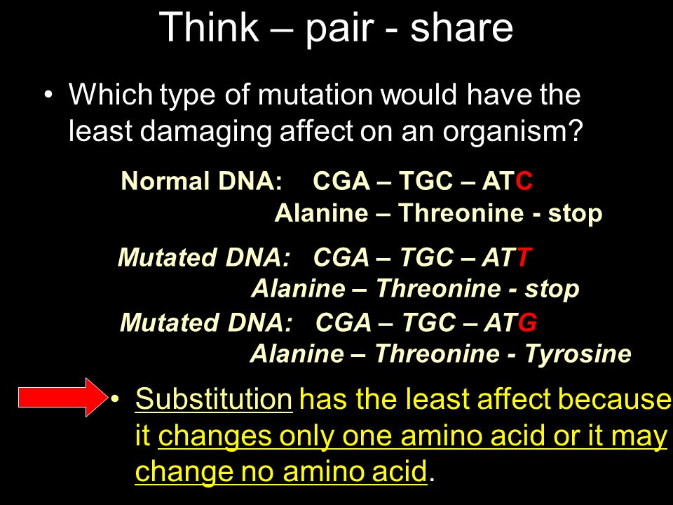 Think – pair - share Which type of mutation would have the least damaging affect on an organism Mutated DNA: CGA – TGC – ATT.