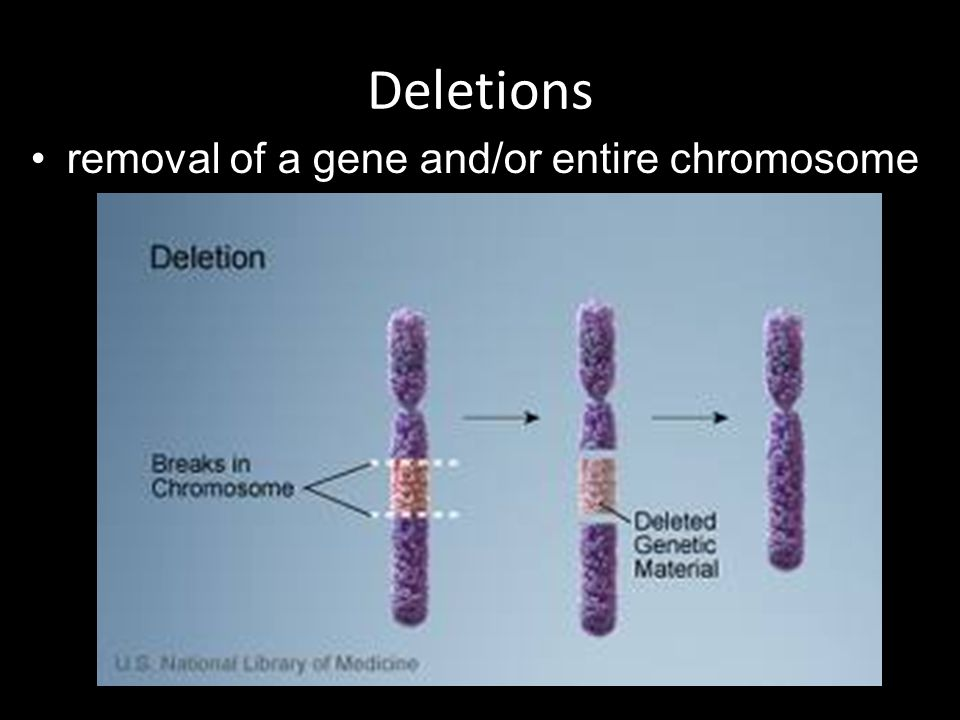 Deletions removal of a gene and/or entire chromosome