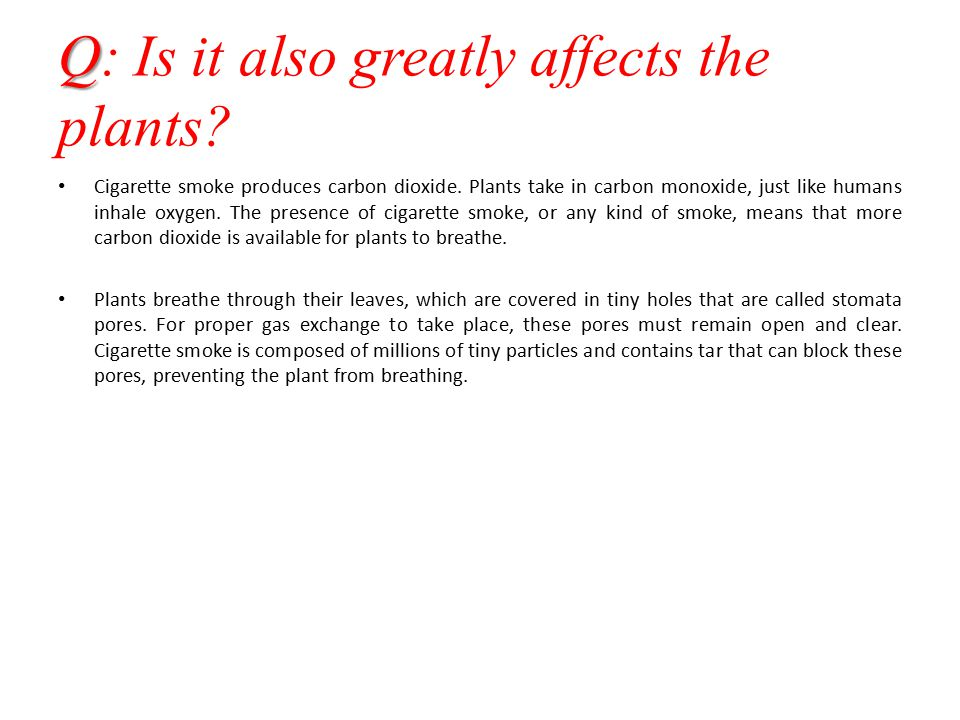Q: Is it also greatly affects the plants