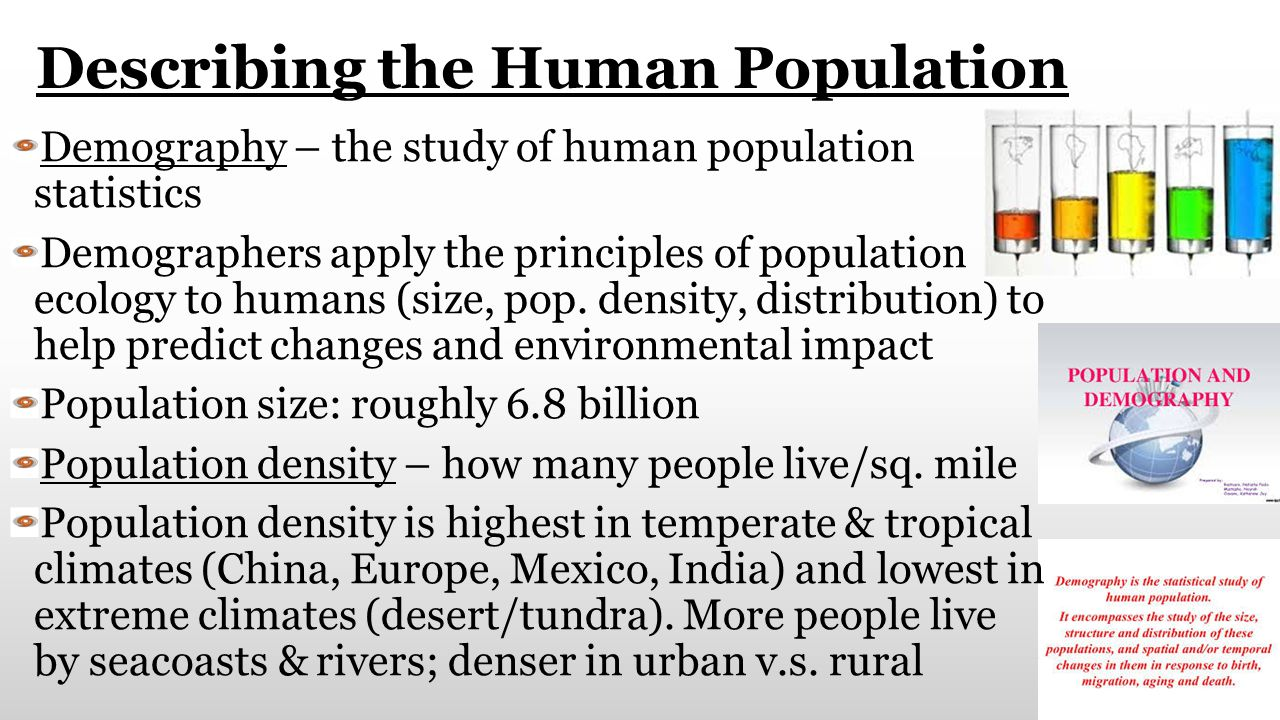 Unit 8 Human Population 8A Trends Predictions 8B People – Human Population Worksheet