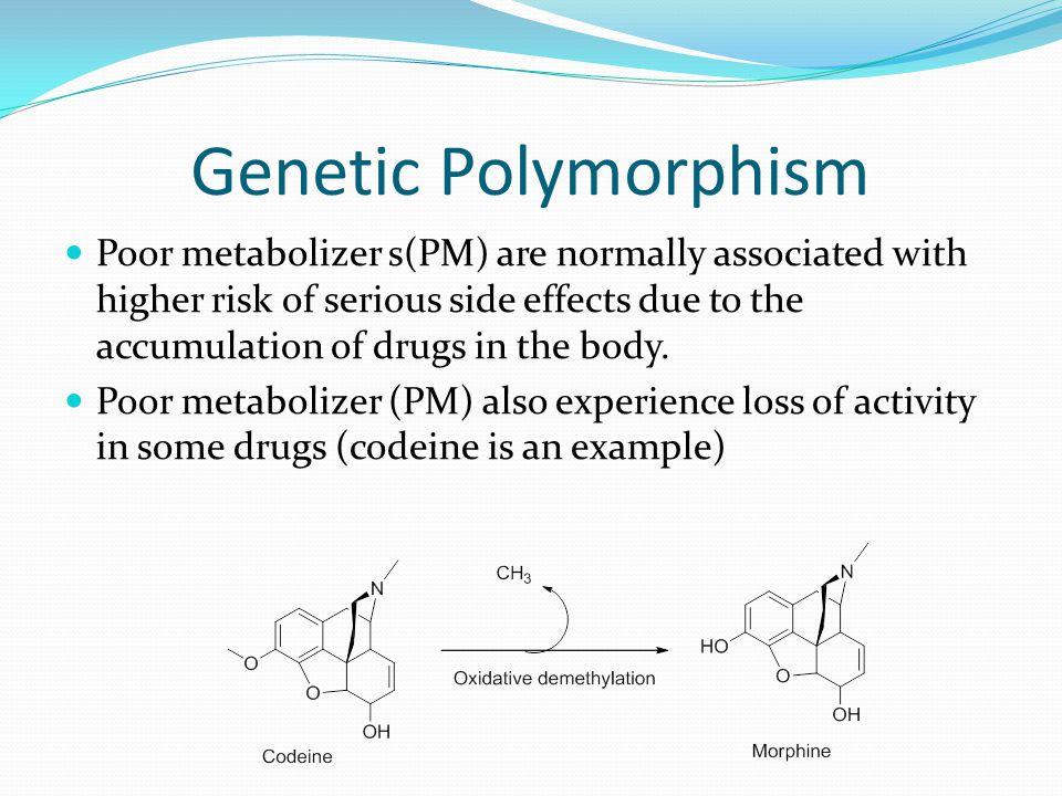 Genetic Polymorphism