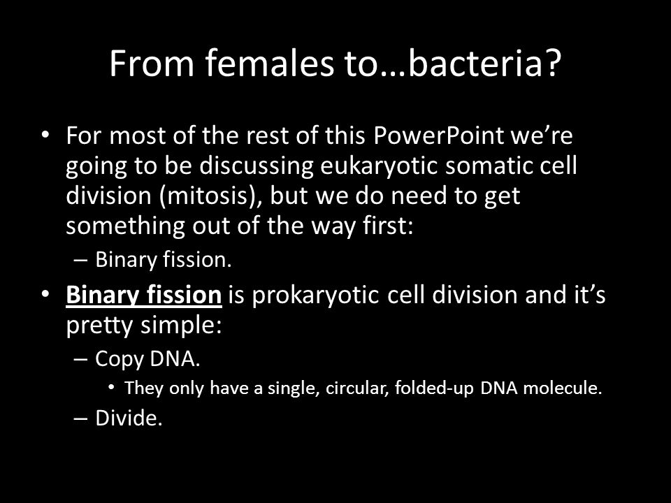 From females to…bacteria