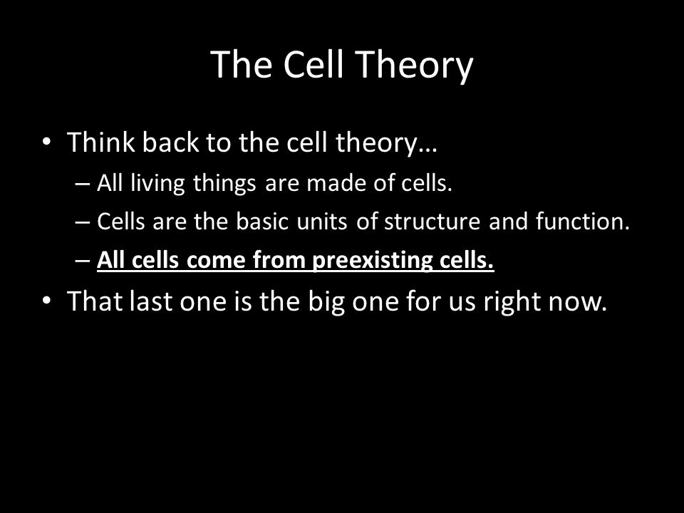 The Cell Theory Think back to the cell theory…
