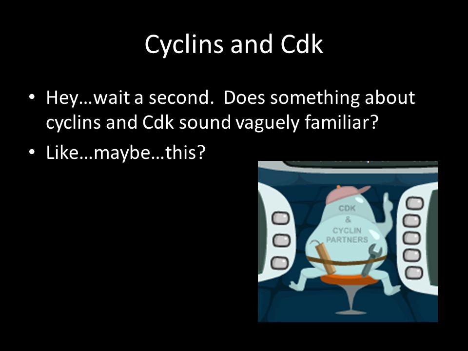 Cyclins and Cdk Hey…wait a second. Does something about cyclins and Cdk sound vaguely familiar.