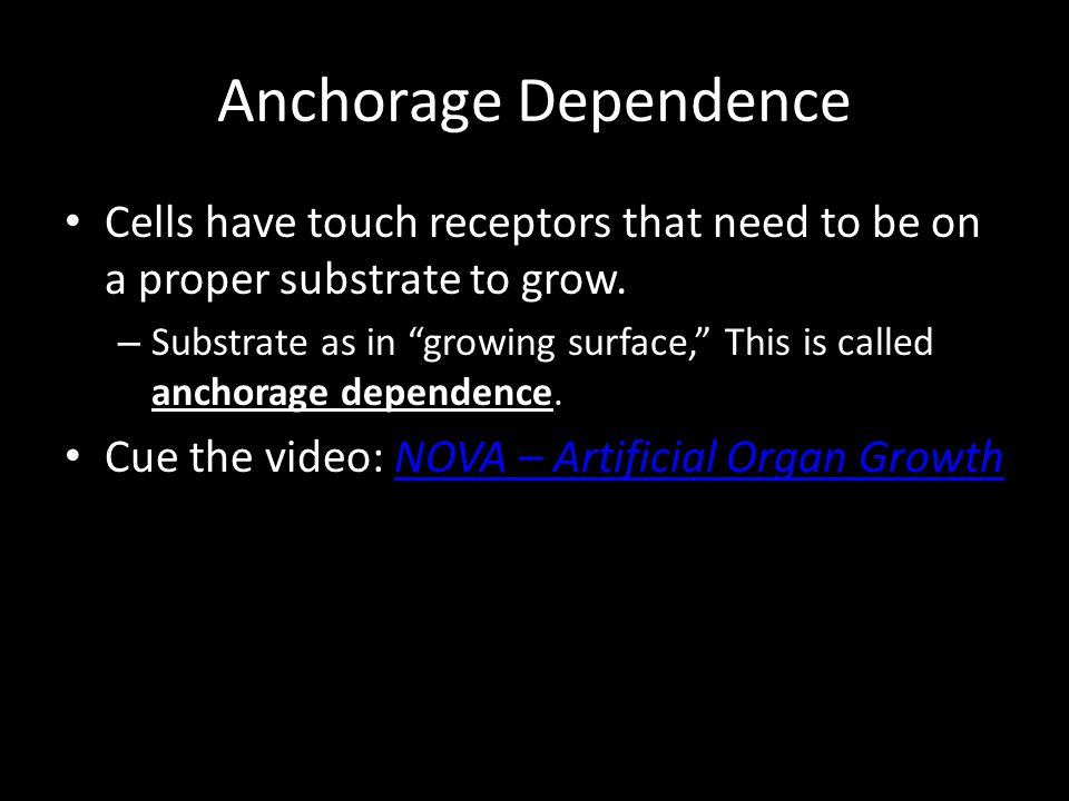 Anchorage Dependence Cells have touch receptors that need to be on a proper substrate to grow.
