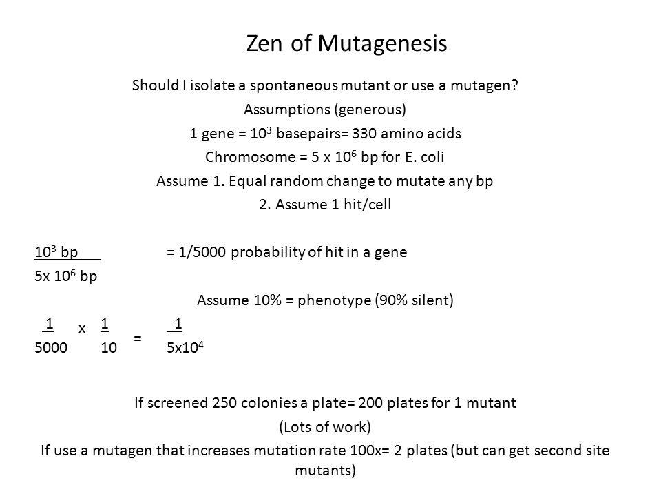 Zen of Mutagenesis