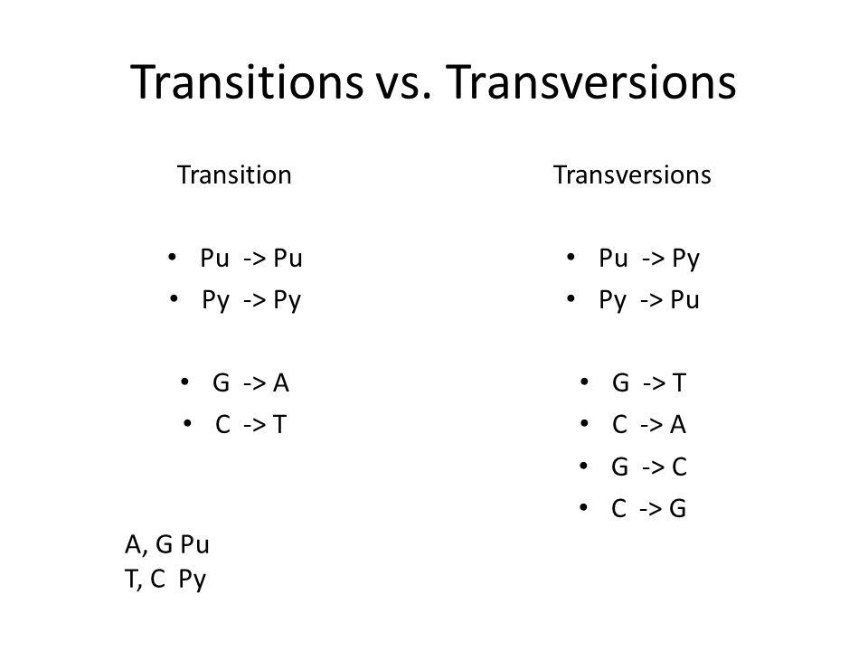 Transitions vs. Transversions