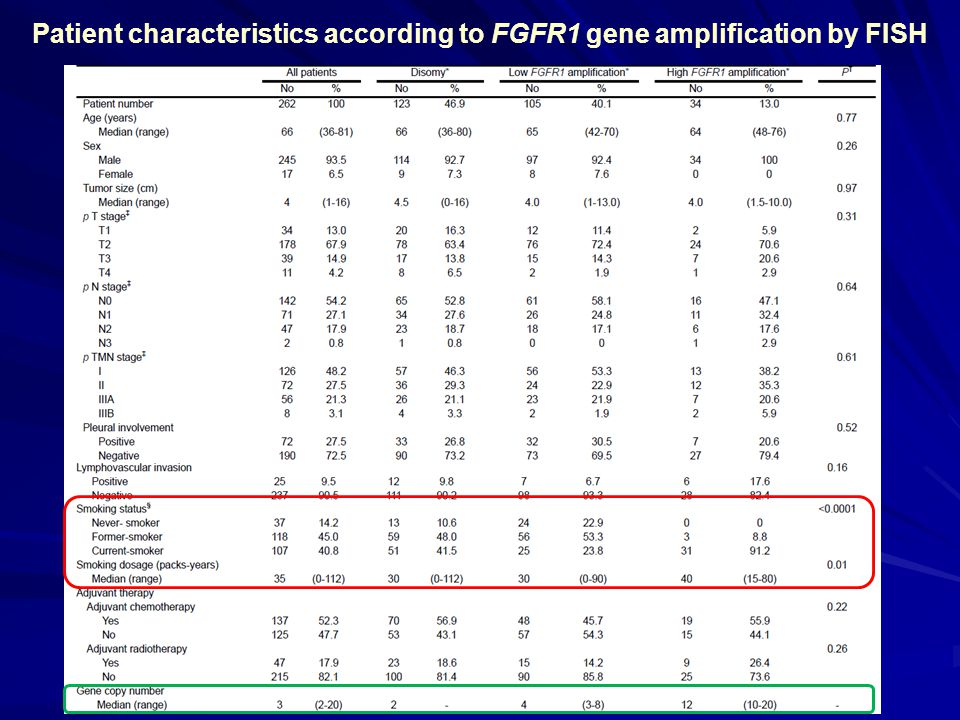 Patient characteristics according to FGFR1 gene amplification by FISH