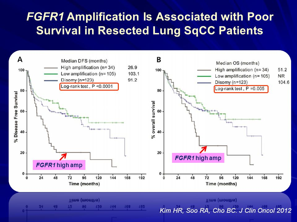 FGFR1 Amplification Is Associated with Poor Survival in Resected Lung SqCC Patients