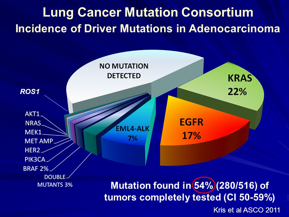 Lung Cancer Mutation Consortium