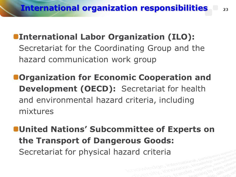 International organization responsibilities