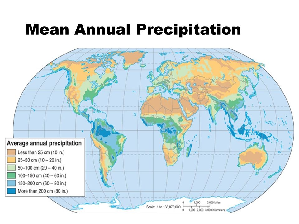 Mean Annual Precipitation