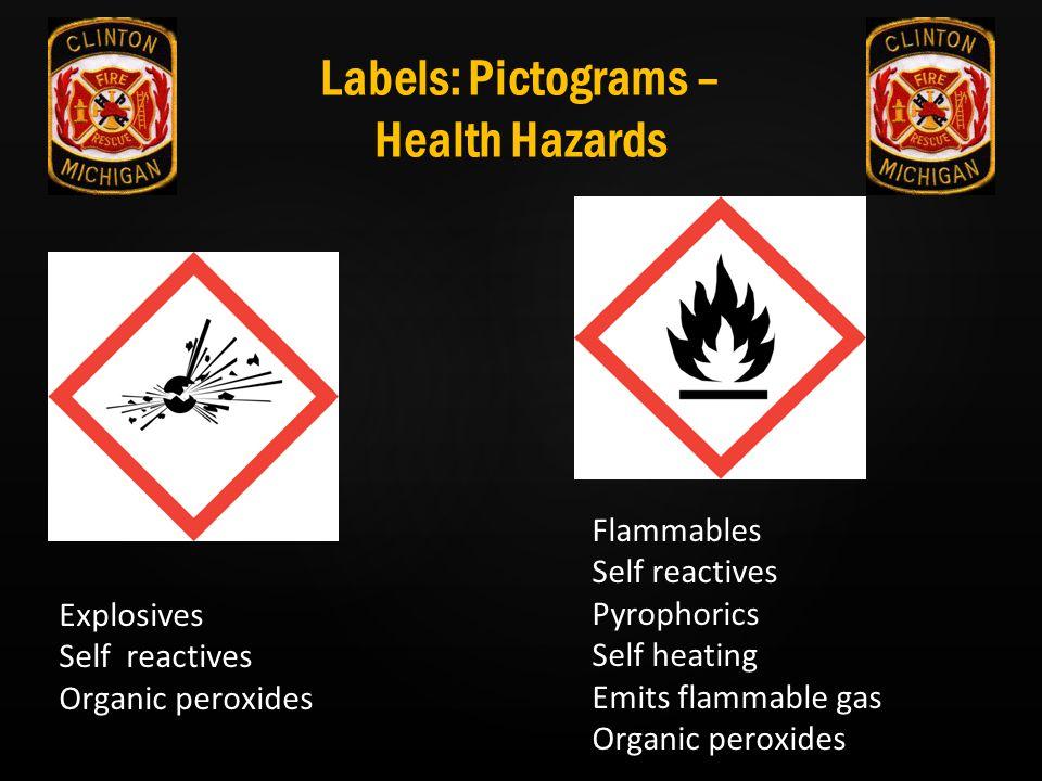 Labels: Pictograms – Health Hazards