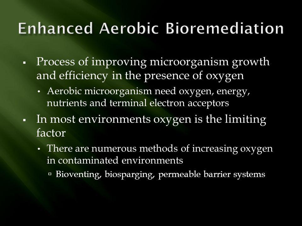 Enhanced Aerobic Bioremediation