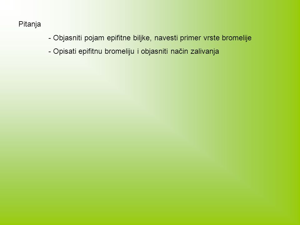 Pitanja - Objasniti pojam epifitne biljke, navesti primer vrste bromelije.