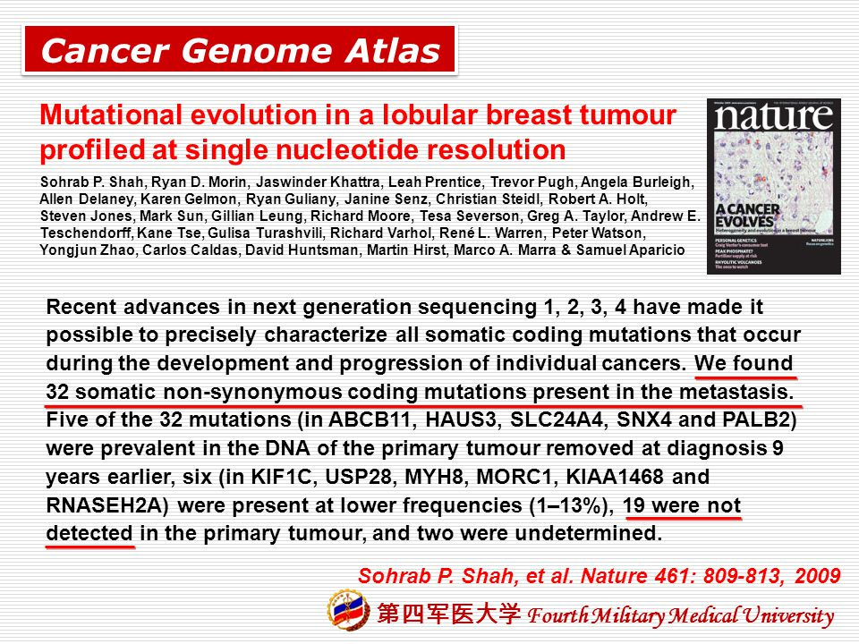 Cancer Genome Atlas Mutational evolution in a lobular breast tumour profiled at single nucleotide resolution.