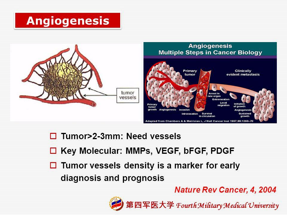 Angiogenesis Tumor>2-3mm: Need vessels