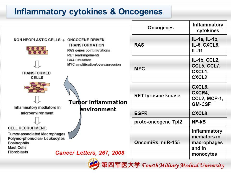 Inflammatory cytokines & Oncogenes Tumor inflammation environment