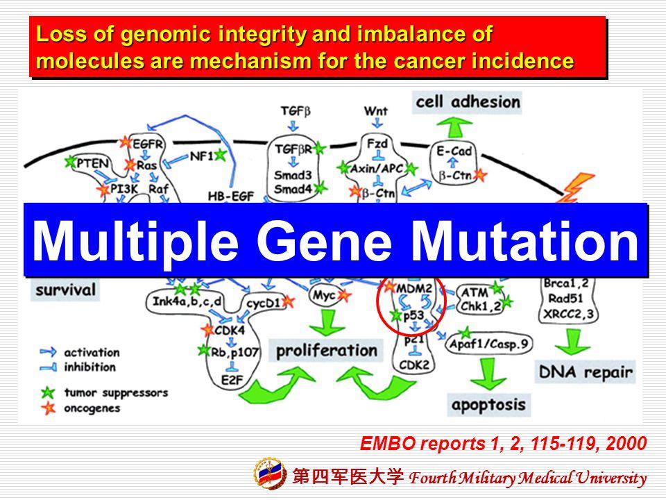Multiple Gene Mutation
