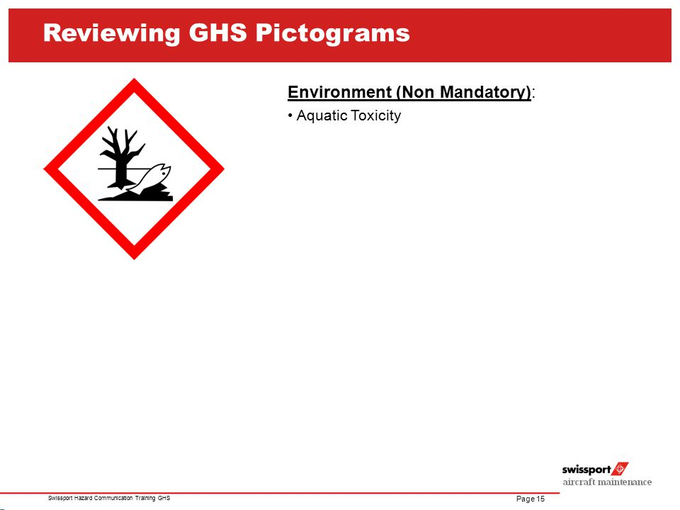 Reviewing GHS Pictograms