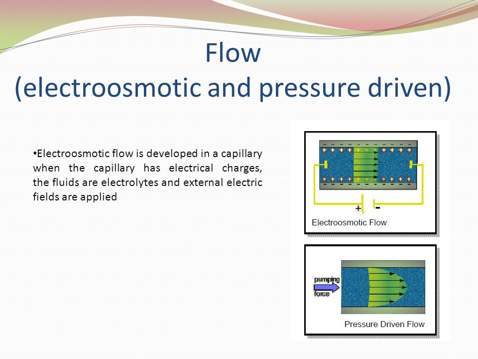 Flow (electroosmotic and pressure driven)