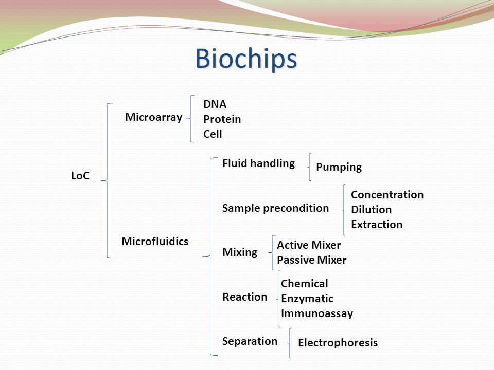Biochips DNA Protein Microarray Cell Fluid handling Pumping LoC