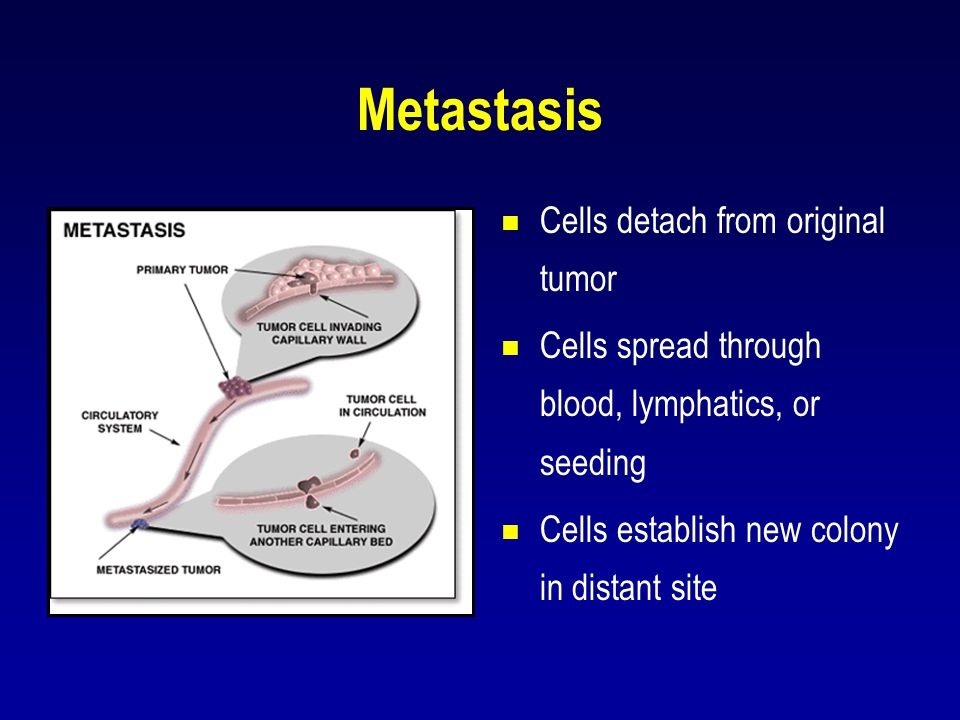 Metastasis Cells detach from original tumor