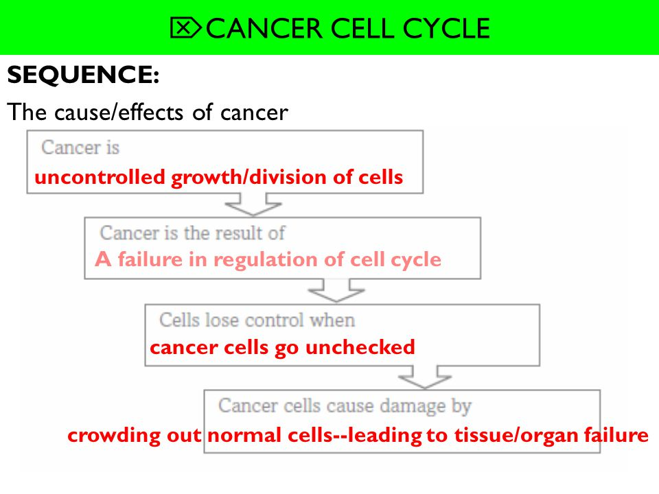 SEQUENCE: The cause/effects of cancer