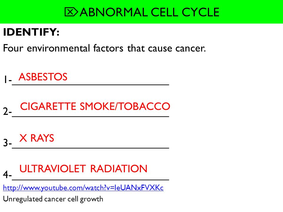 ABNORMAL CELL CYCLE IDENTIFY: