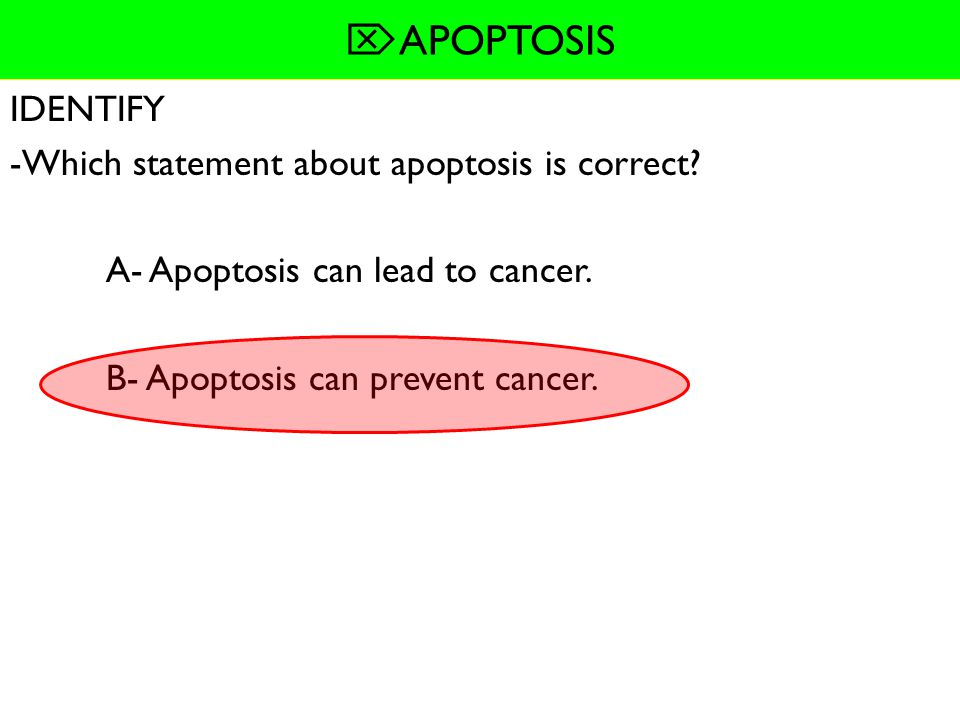 APOPTOSIS READING Q's IDENTIFY