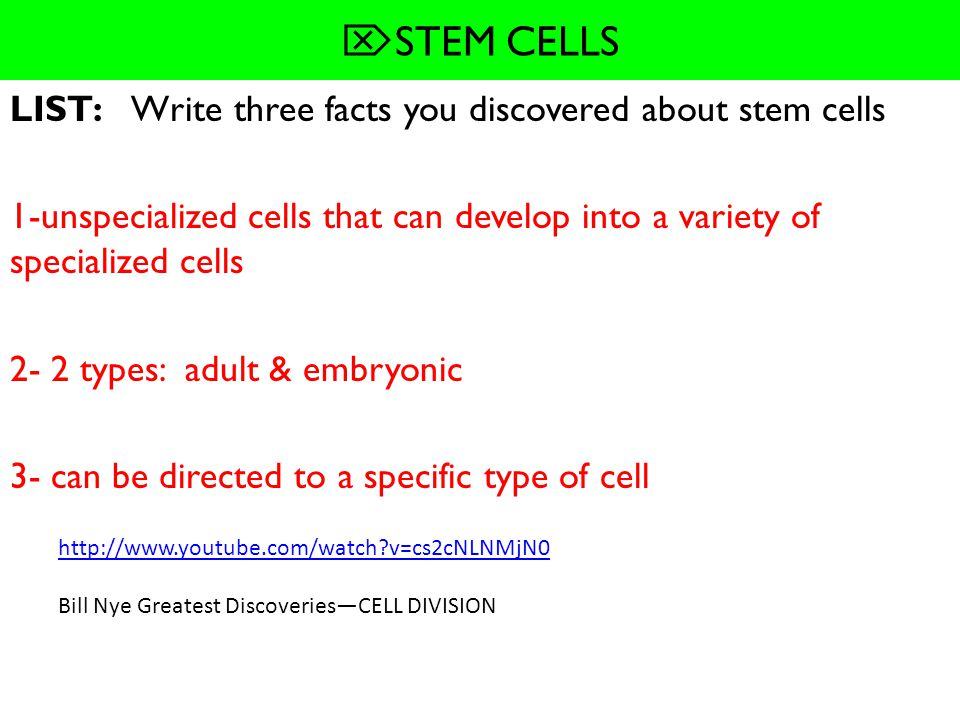 STEM CELLS LIST: Write three facts you discovered about stem cells