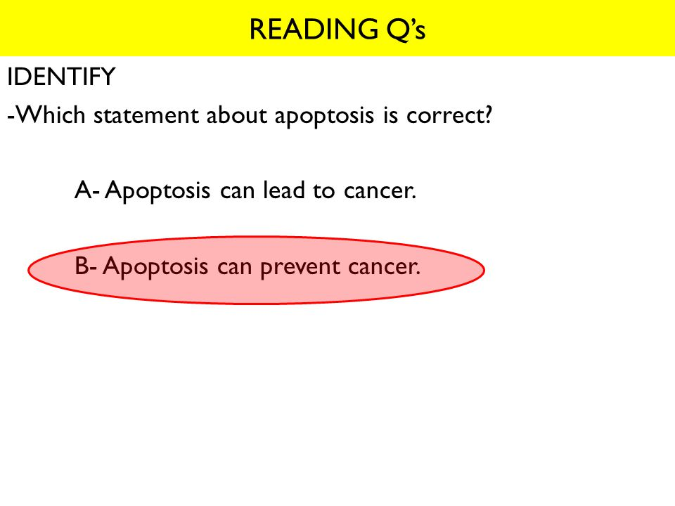 READING Q's IDENTIFY -Which statement about apoptosis is correct