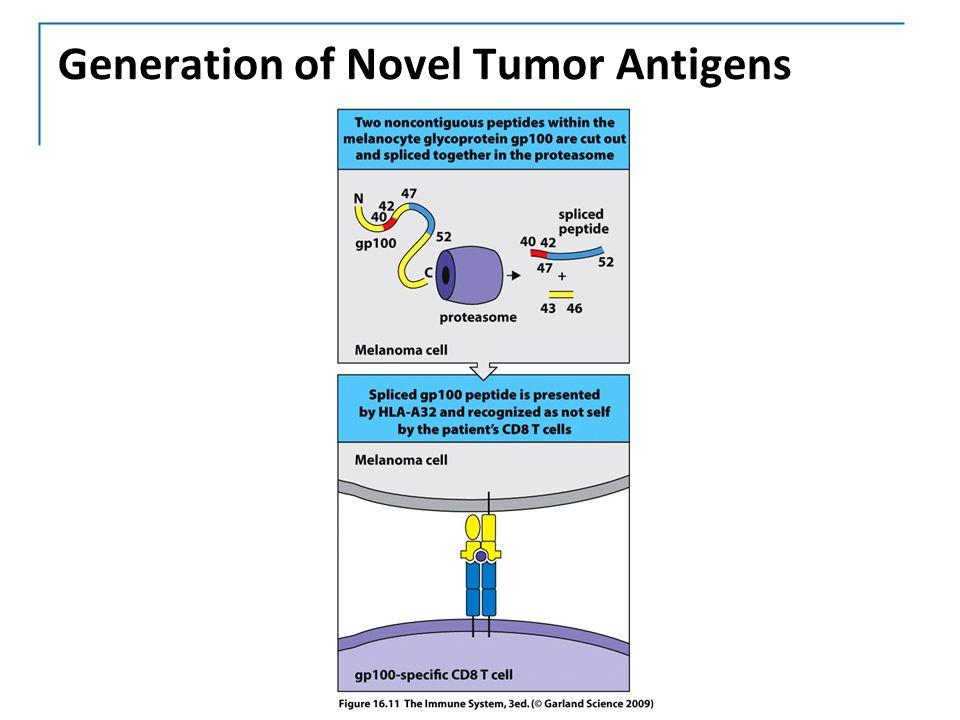Generation of Novel Tumor Antigens