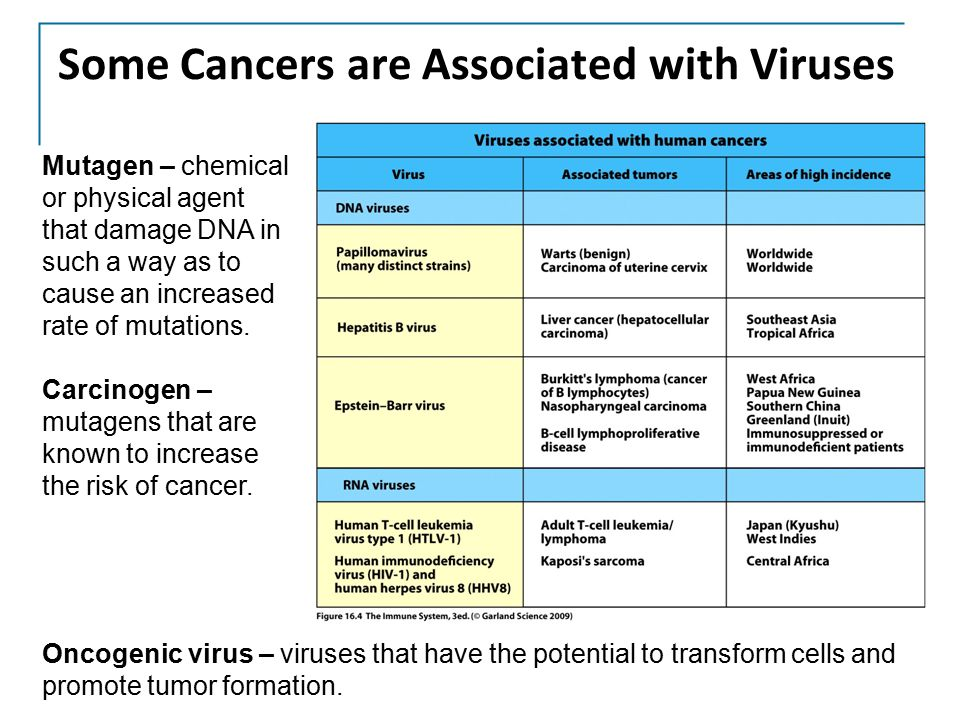 Some Cancers are Associated with Viruses