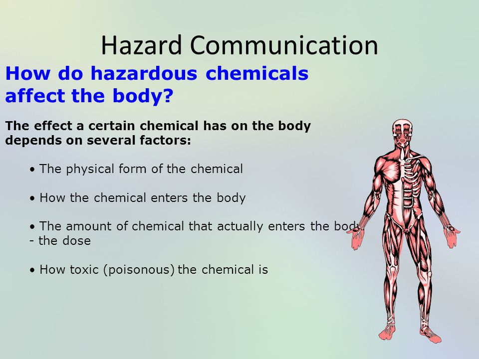 Hazard Communication How do hazardous chemicals affect the body