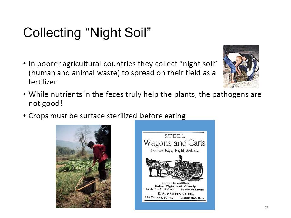 Collecting Night Soil