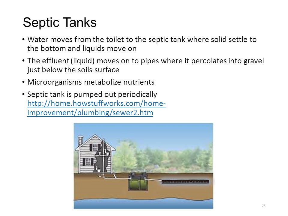Septic Tanks Water moves from the toilet to the septic tank where solid settle to the bottom and liquids move on.
