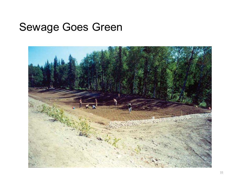 Sewage Goes Green
