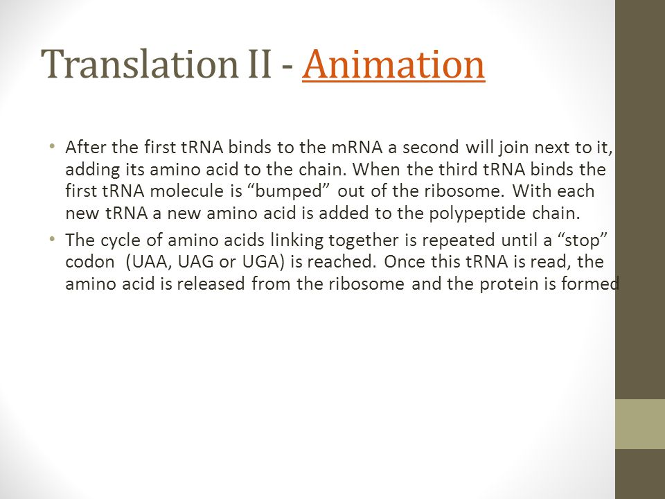 Translation II - Animation