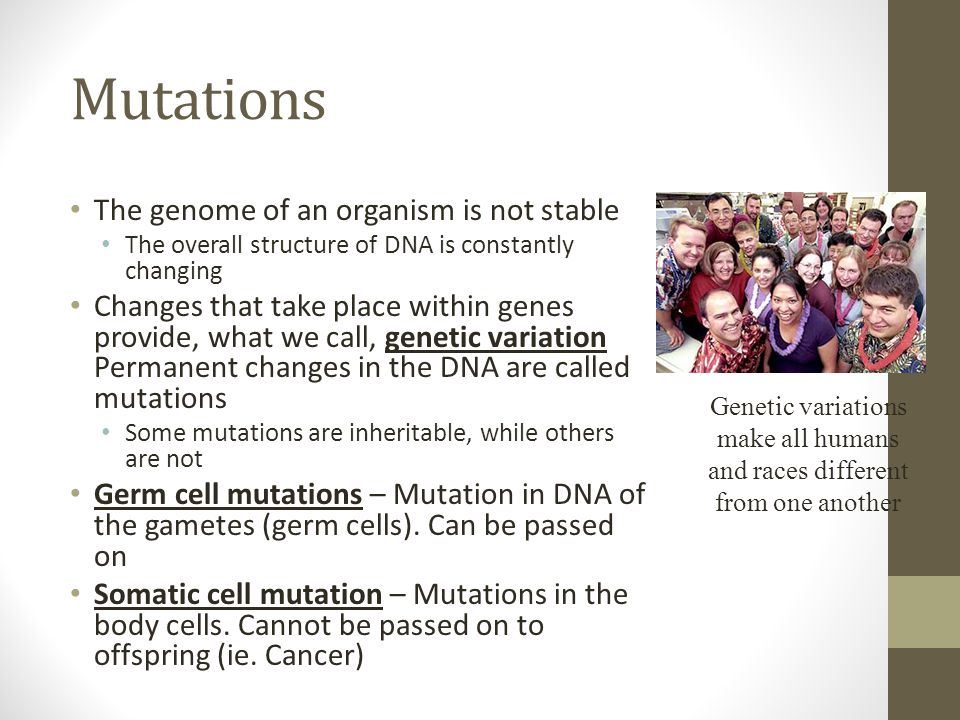 Mutations The genome of an organism is not stable