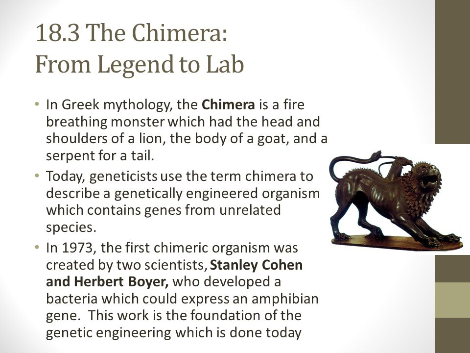 18.3 The Chimera: From Legend to Lab