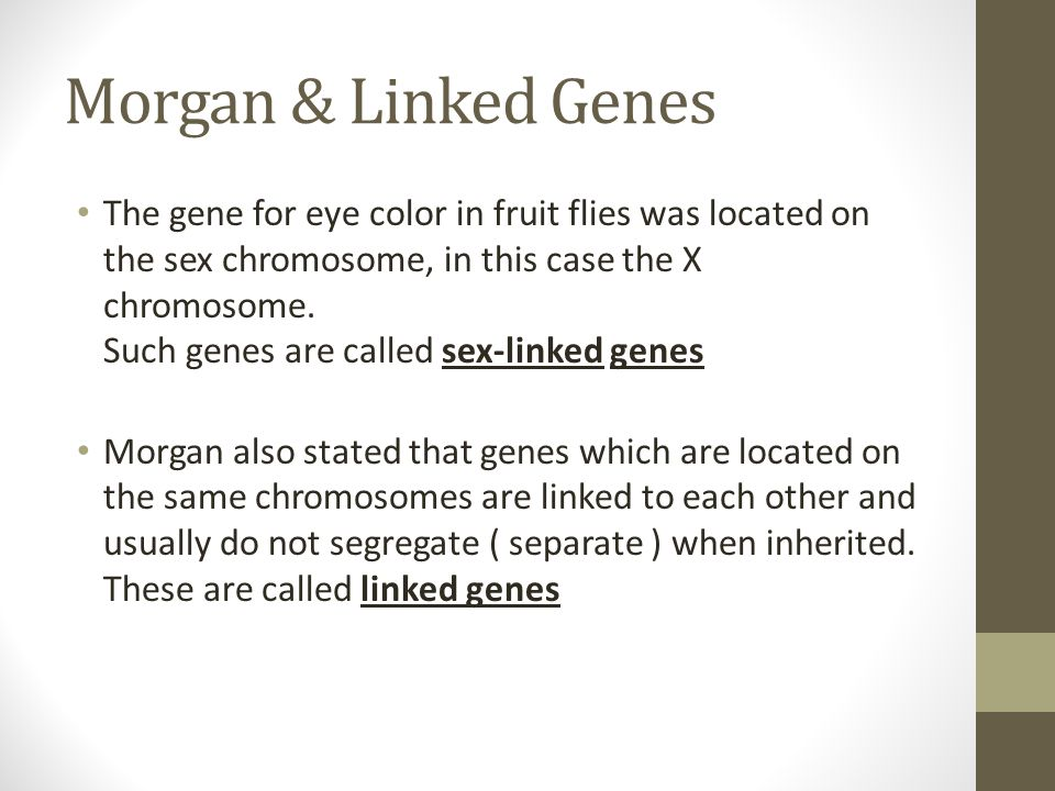 Morgan & Linked Genes