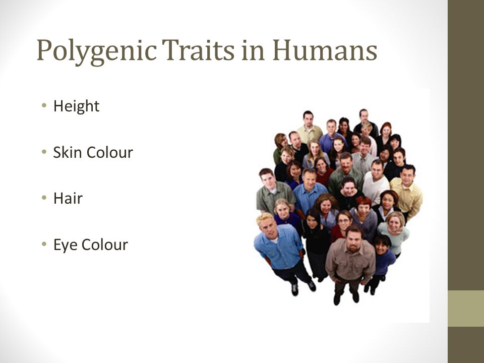 Polygenic Traits in Humans