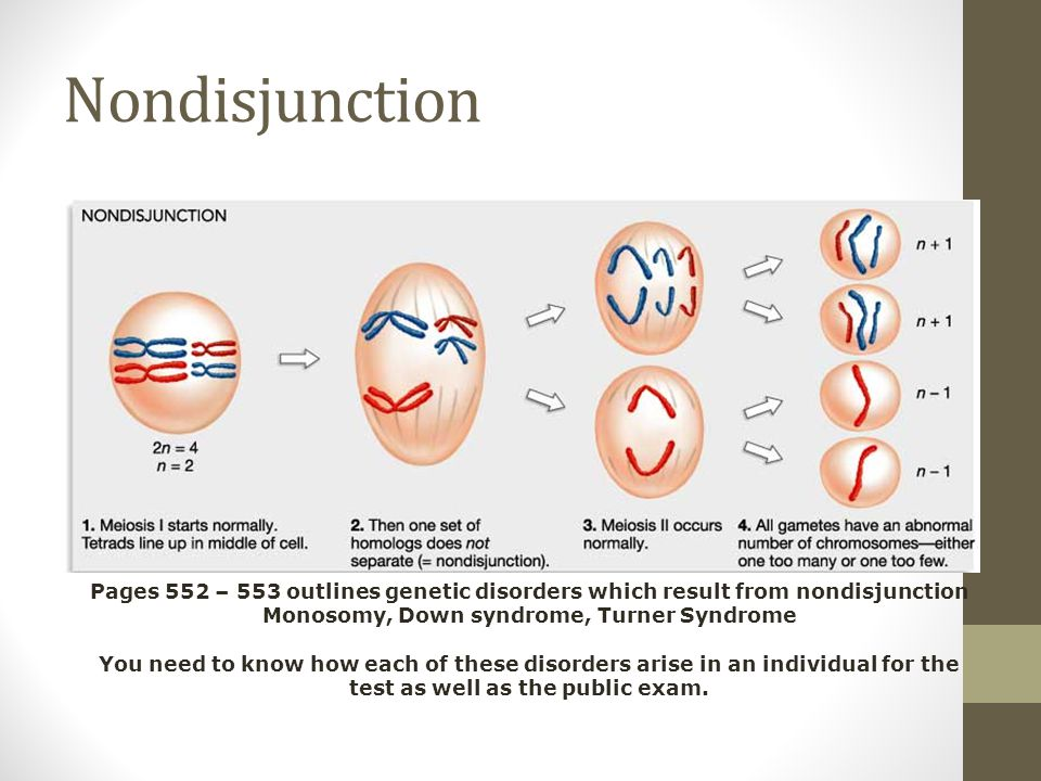 Nondisjunction Pages 552 – 553 outlines genetic disorders which result from nondisjunction.
