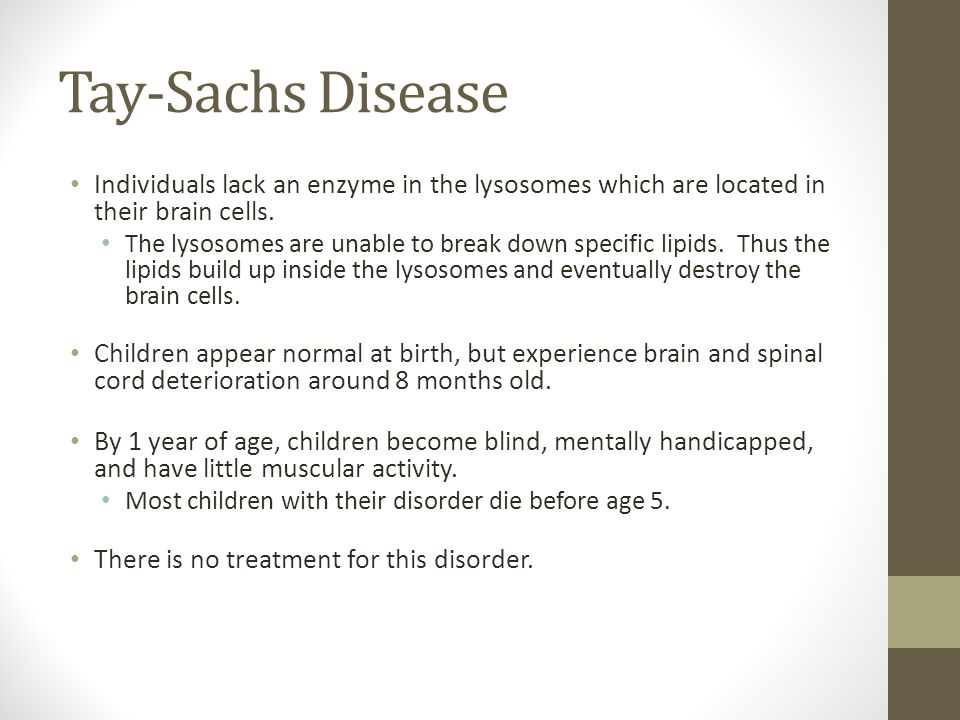 Tay-Sachs Disease Individuals lack an enzyme in the lysosomes which are located in their brain cells.